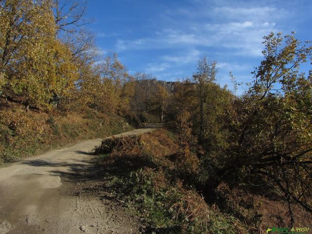 Pista desde la Collada Llomena siguiendo ruta al Pierzu