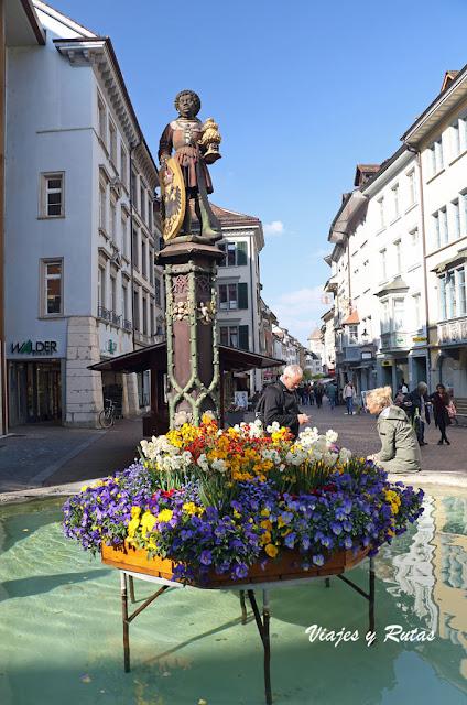 Fuentes de Schauffhausen, Suiza