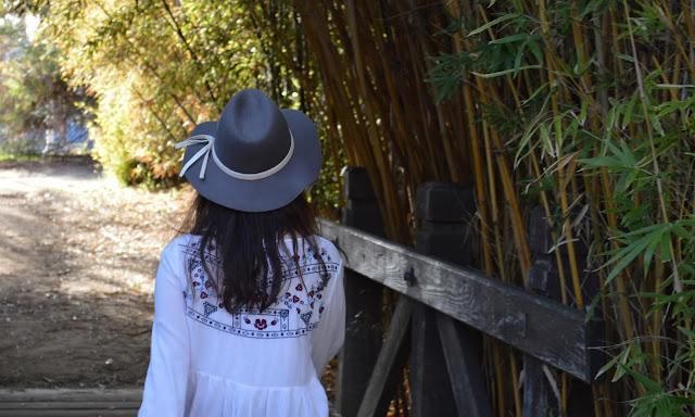 Cal State Fullerton CSUF Arboretum