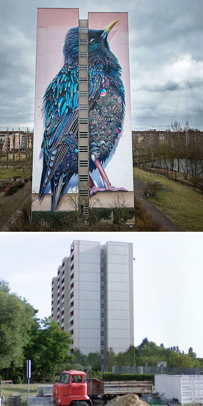 Berin's Giant Starling Mural