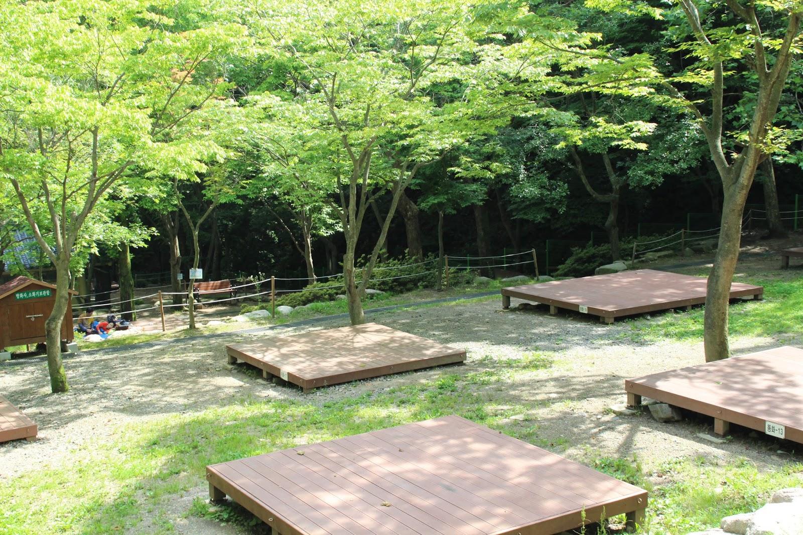 Fun & Free Daegu Travel: Camping Spot for Summer Vacation ...