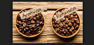 Robusta vs Arabika