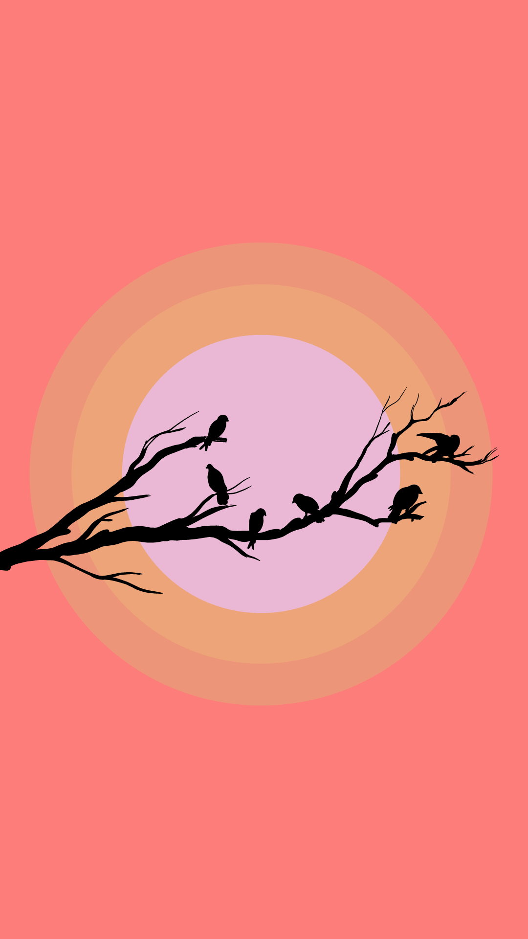 minimalistic minimalism cute birds