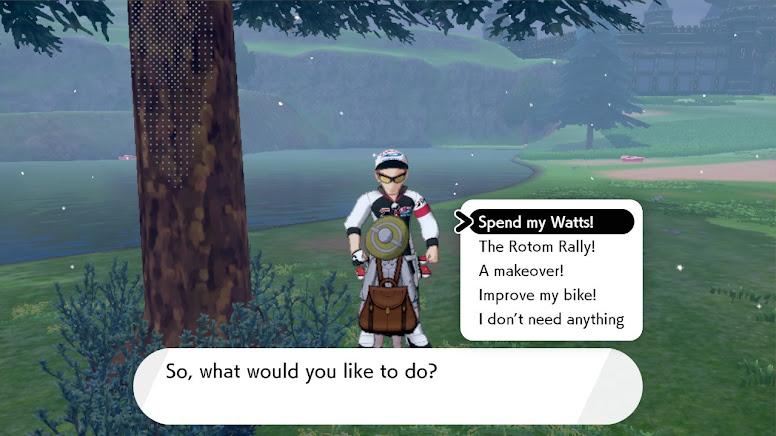 Wild Area Watt Trader