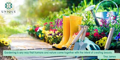 gardening kerala