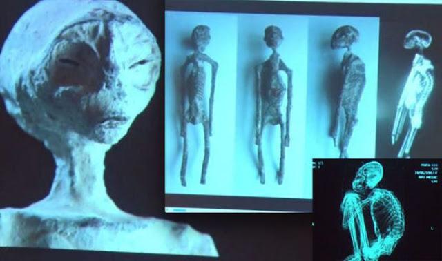 Phát hiện 5 xác ướp kỳ lạ nghi người ngoài hành tinh trên cao nguyên Nazca ở Peru