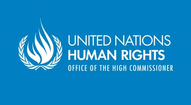 The UN Human Rights Fellowship programme for Africans 2020