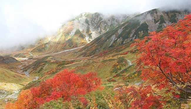 central japan autumn