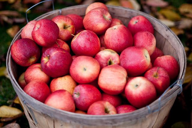 فائدة فوائد التفاح للبشرة والشعر %D9%81%D9%88%D8%A7%D