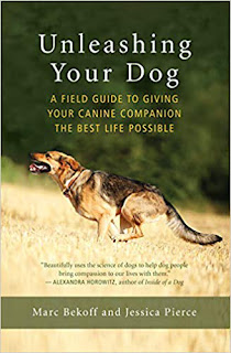 Unleashing your dog book cover. Summer reading 2019