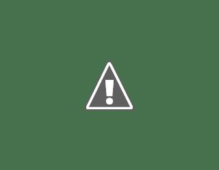 Dalberg, Undergraduate Intern