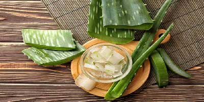 Aloe Vera for vaginal itching