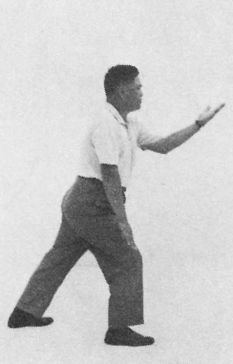 Tai Chi Chuan (Square Form) 25. Flying Oblique