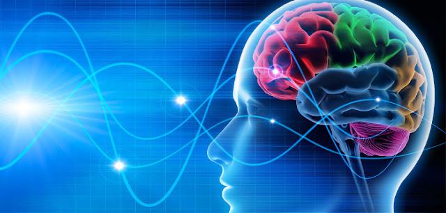 Kasus Ajaib Manusia Yang Hidup Tanpa Otak