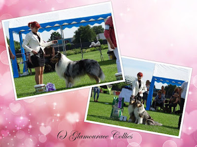 Clubmatch Hoogeveen super for team Glamourace Collies