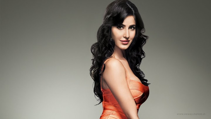 Katrina Kaif Stylish Wallpaper