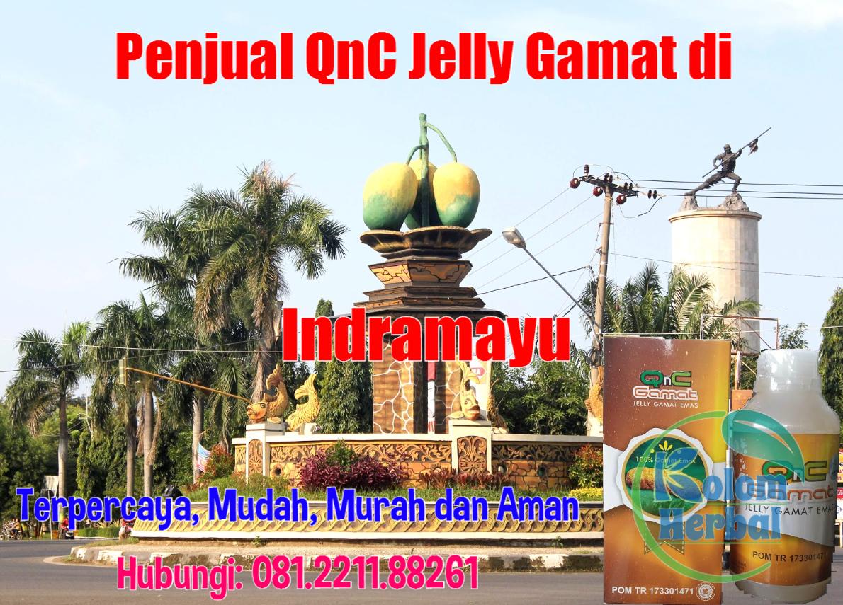 Penjual QnC Jelly Gamat di Indramayu