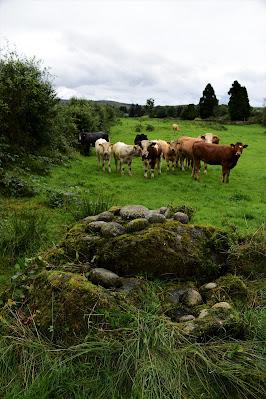 Killinagh Cursing Stone