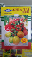 kandungan tomat, tomat puspita, benih hibrida, cap kapal terbang, manfaat tomat, jual benih tomat, toko pertanian, toko online, lmga agro