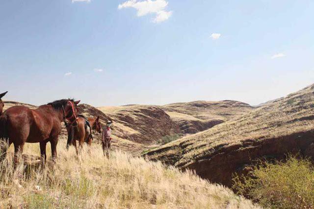 Khu vực sa mạc Namibia gần như còn rất hoang sơ, không nhiều cửa hàng cũng như dịch vụ. Bạn phải băng qua những con đường dài ngoằng, trơ trọi cùng đất đá đồng thời đối mặt với khí nóng hầm hập ập vào người. Trước những điều kiện có phần khắc nghiệt ở vùng đất Châu Phi này, bạn cần chuẩn bị cho mình những vật dụng cần thiết mang theo để đảm bảo chuyến đi đến đích một cách trọn vẹn
