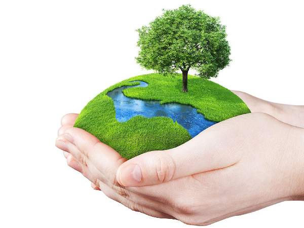 Environment Quiz on Biodiversity – multiple choice questions and answers