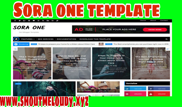 Sora one blogger template