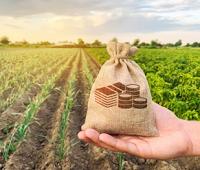 Pengertian Manajemen Agribisnis, Ruang Lingkup, Aspek, dan Fungsinya