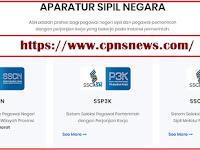 Pendaftaran Online via sscasn.bkn.go.id, Jadwal dan Proses Rekrutmen CPNS 2019 Segera Diumumkan