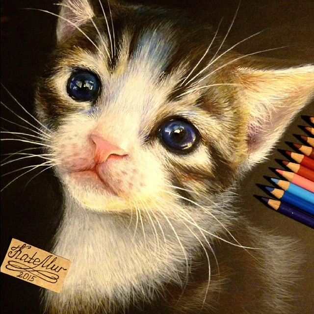 09-Kitten-Kate-Mur-Fantasy-and-Realism-in-Paintings-and-drawings-of-animals-www-designstack-co