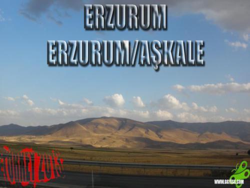 2013/09/01 Turkey2013 47. Gün (Erzurum - Erzurum/Aşkale)