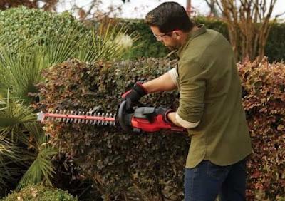 Best Budget Cordless Hedge Trimmer