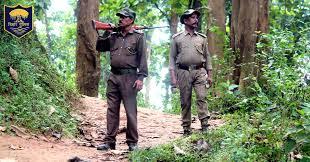 Bihar Police Forest Range Officer Recruitment 2020 | Apply Online For 43 Forest Range Officer Posts