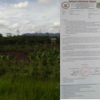 LPLHI Laporkan Oknum Pengusaha Perambah Hutan di Pasaman Barat Ke Gakum KLHK Pusat