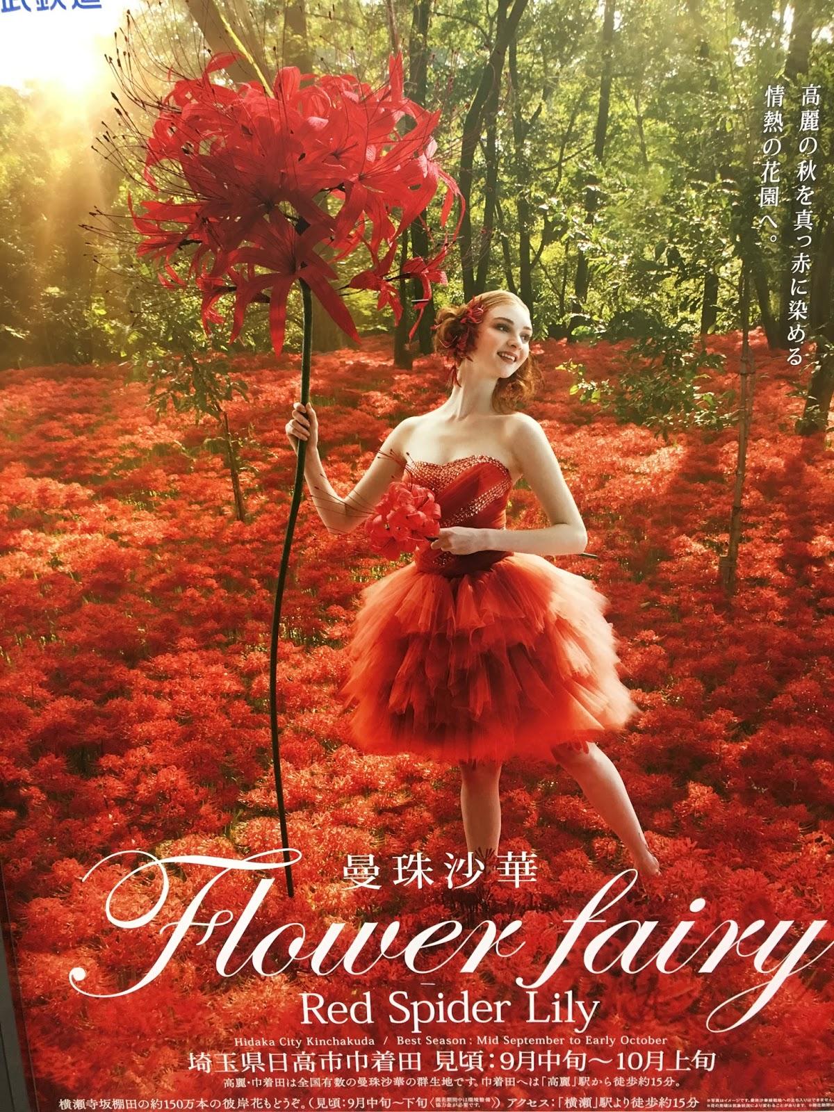 Red spider lily higanbana a symbol of autumnd death izmirmasajfo