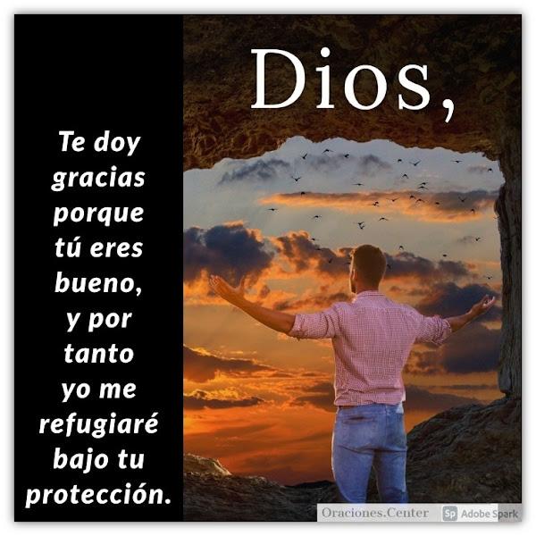 Oración del Miércoles - Refúgiate en él y Recibe su Bondad