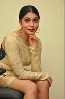 Actress Pooja Roshan Stills in Golden Short Dress at Box Movie Audio Launch  0094.JPG