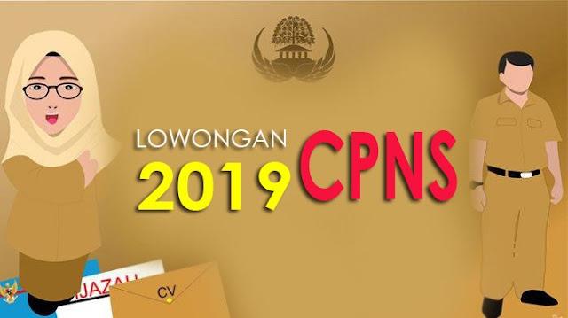Info Persyaratan Penerimaan dan Formasi CPNS 2019