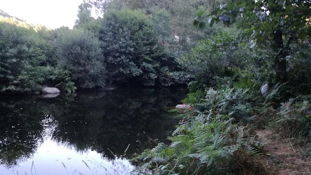 águas Cristalinas Rio Homem