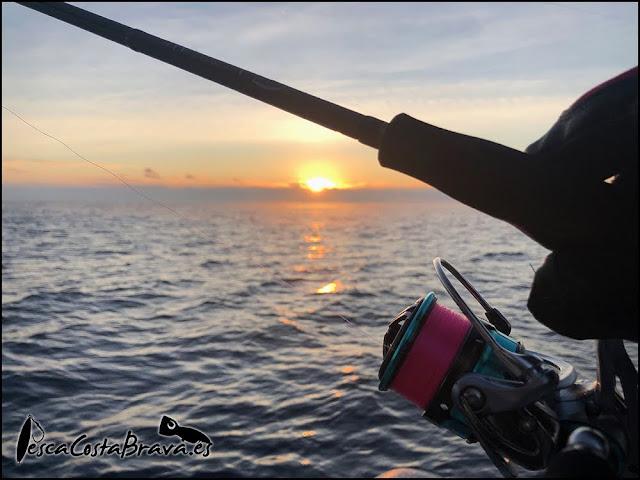 graphiteleader nuovo calamaretti pesca costa brava jjpescasport 2 - GRAPHITELEADER NUOVO CALAMARETTI TIP EGING- PRIMERAS SENSACIONES