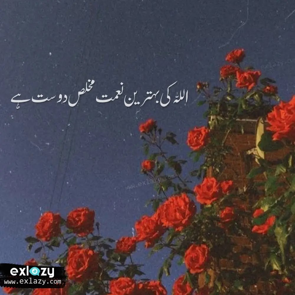 The Best 20 Friendship Quotes in Urdu
