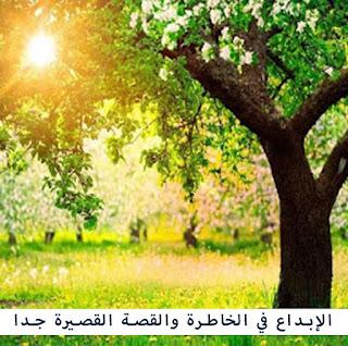 نثر ( ملاذ )  بقلم الدكتورة صفاء وزان