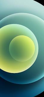 خلفية ايفون 12 خضراء غامقة