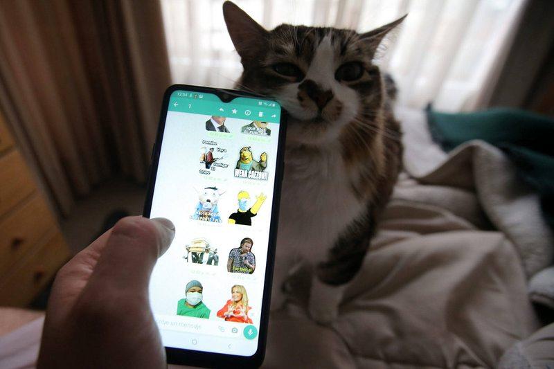 Cómo conservar los stickers del  WhatsApp si renueva su celular