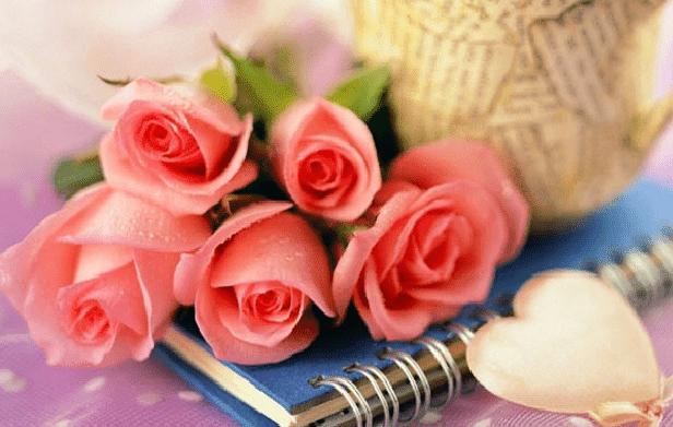 Best Rose Day Shayari for February 7