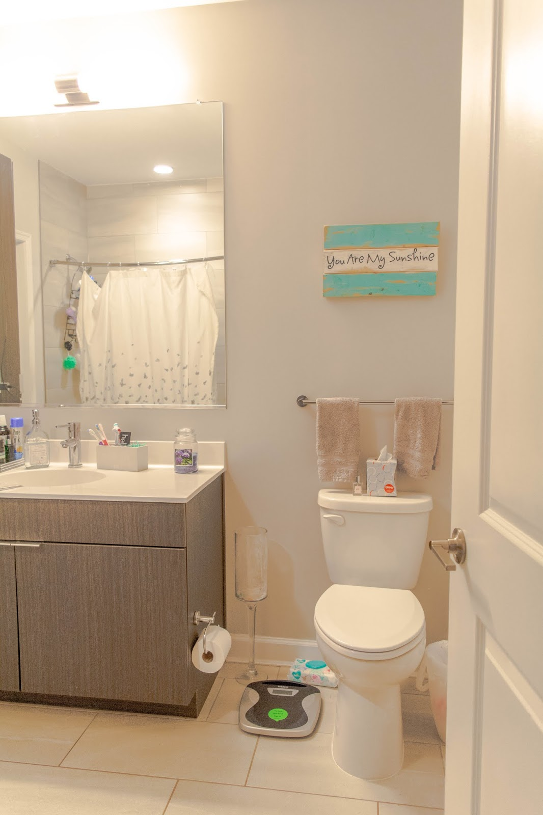 Falls Church Apartment Tour: Bedroom, Bathroom & Closet