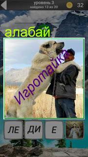 собака породы алабай обнимает своего хозяина 3 уровень 600 забавных картинок