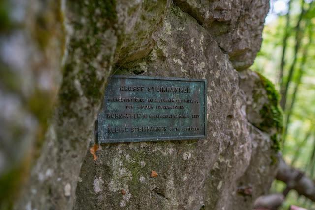 Westerwaldsteig Etappe 1 | Von Herborn nach Breitscheid | Tierpark Herborn | Herbstlabyrinth Erdbach 25