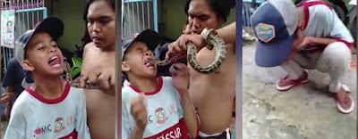 Bocah asal Makassar diigigit ular piton