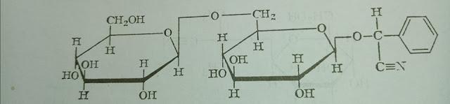 الأميغدالين Amygdalin
