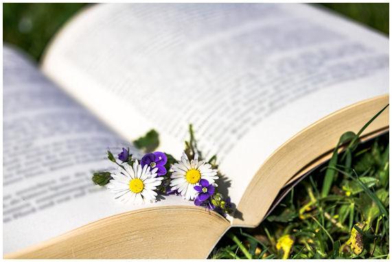 """Avoin kirja pihanurmikolla ja pari päivänkakkaraa """"kirjanmerkkinä"""" lukutauon ajaksi."""